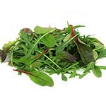 Amestec Salata verde